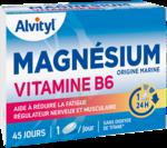 Govital Magnésium Vitamine B6 Comprimés B/45 à Bergerac