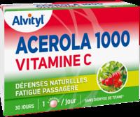 Govital Acerola 1000 à Bergerac
