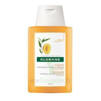 Klorane Mangue Shampooing Nutrition Cheveux Secs 100ml à Bergerac