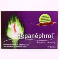 HEPANEPHROL, solution buvable en ampoule à Bergerac