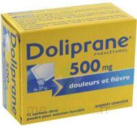 Doliprane 500 Mg Poudre Pour Solution Buvable En Sachet-dose B/12 à Bergerac