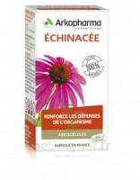 Arkogélules Echinacée Gélules B/45 à Bergerac