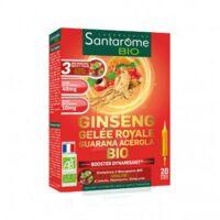 Santarome Bio Ginseng Gelée Royale Guarana Acérola Solution Buvable 20 Ampoules/10ml à Bergerac