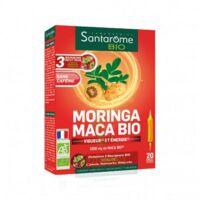 Santarome Bio Morinca Maca Solution Buvable 20 Ampoules/10ml à Bergerac
