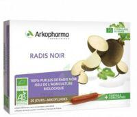 Arkofluide Bio Ultraextract Radis Noir Solution Buvable 20 Ampoules/10ml à Bergerac