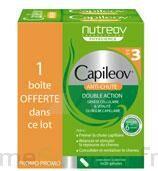 Capileov, Bt 30 à Bergerac