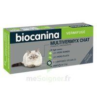 Biocanina Multivermyx Comprimés Vermifuge Chat B/2 à Bergerac
