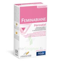Pileje Feminabiane Périnatal 28 Gélules Blanches Et 28 Gélules Jaunes à Bergerac