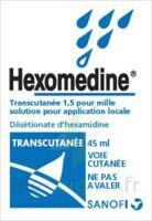 Hexomedine Transcutanee 1,5 Pour Mille, Solution Pour Application Locale à Bergerac