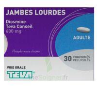 Diosmine Teva Conseil 600 Mg, Comprimé Pelliculé à Bergerac