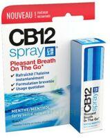 CB 12 Spray haleine fraîche 15ml à Bergerac