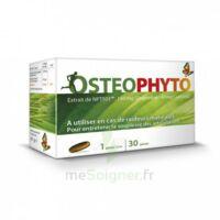 osteophytum 30 gelules à Bergerac