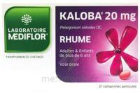 KALOBA 20 mg Cpr pell Plq/21 à Bergerac