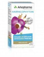 Arkogelules Harpagophyton Gélules Fl/45 à Bergerac