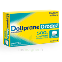 Dolipraneorodoz 500 Mg, Comprimé Orodispersible à Bergerac