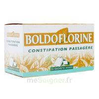 Boldoflorine, Mélange De Plantes Pour Tisane En Sachet-dose B/24 à Bergerac
