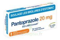 PANTOPRAZOLE EG LABO CONSEIL 20 mg Cpr gastro-rés Plq/7 à Bergerac