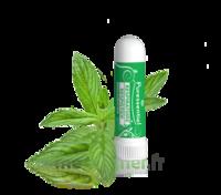 Puressentiel Respiratoire Inhaleur Respiratoire Aux 19 Huiles Essentielles - 1 Ml à Bergerac