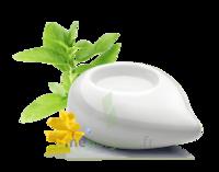 PURESSENTIEL DIFFUSION Diffuseur à chaleur douce céramique blanc à Bergerac