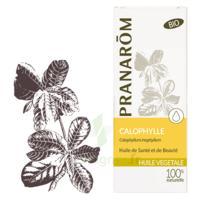 Pranarom Huile Végétale Bio Calophylle 50ml à Bergerac