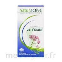 ELUSANES VALERIANE 200 mg, gélule Pilul/30 à Bergerac