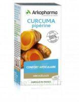 Arkogelules Curcuma Pipérine Gélules Fl/45 à Bergerac