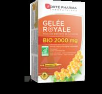 Forte Pharma Gelée Royale Bio 2000 Mg Solution Buvable 20 Ampoules/15ml à Bergerac
