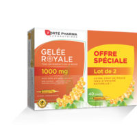 Forte Pharma Gelée Royale 1000 Mg Solution Buvable 2*b/20 Ampoules/10ml à Bergerac