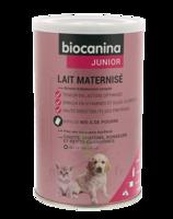 Biocanina Lait Poudre Maternisé B/400g à Bergerac