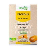 Herbalgem Propolis Large Spectre Gomme Bio B/24 à Bergerac