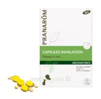 Aromaforce Caps Inhalation Bio B/15 à Bergerac