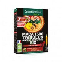Santarome Bio Maca 1500 Tribulus Ginseng Gingembre Solution Buvable 20 Ampoules/10ml à Bergerac