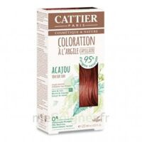 Coloration Capillaire à L'argile Acajou - 120 Ml à Bergerac