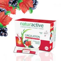 Naturactive Phytothérapie Fluides Solution Buvable Circulation 2b/20 Sticks/10ml à Bergerac