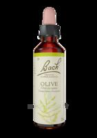 Fleurs De Bach® Original Olive - 20 Ml à Bergerac