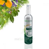 Naturactive Assaini'spray 200ml à Bergerac