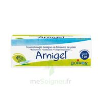 Boiron Arnigel Gel T(alumino-plastique)/45g à Bergerac