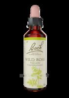 Fleurs De Bach® Original Wild Rose - 20 Ml à Bergerac