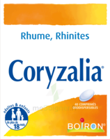 Boiron Coryzalia Comprimés Orodispersibles à Bergerac